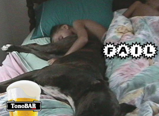 menino em casa eca dormir cama cachorro bunda  fail  Riscos de se dormir com seu animal de estimao! 